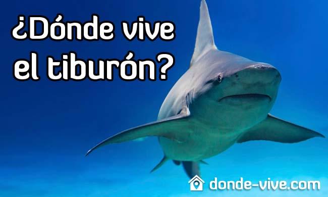 Dónde vive el tiburón