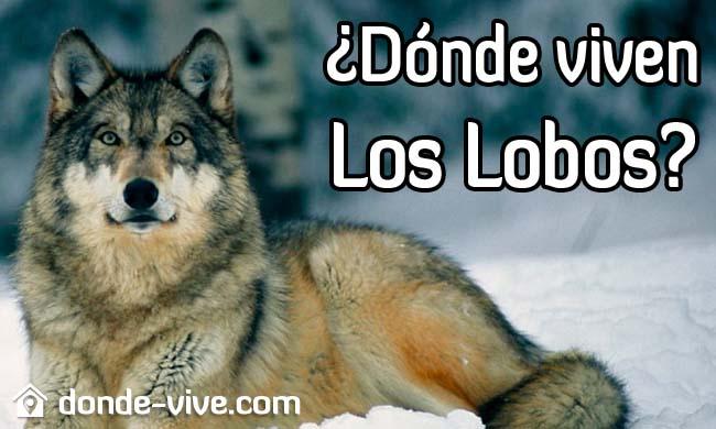 Dónde viven los lobos