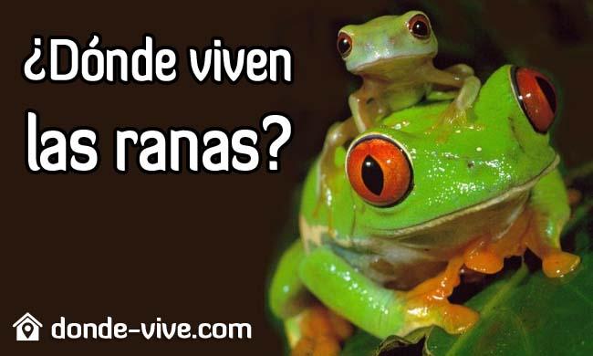 ¿Dónde viven las ranas?
