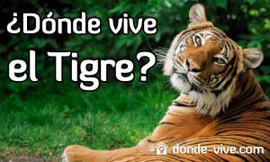 Dónde vive el tigre