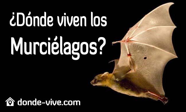 Dónde viven los murciélagos