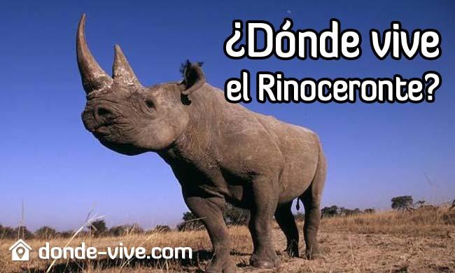 Dónde vive el rinoceronte
