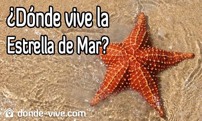 Dónde vive la Estrella de Mar